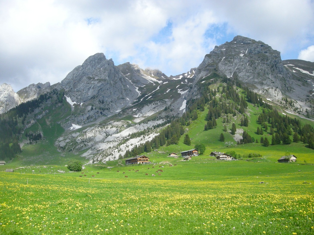 Alpine pasture in the alps, Savoy the country of cheeses, chalets and cows in the Aravis massifs in Savoie, Savoie for all the pleasures,